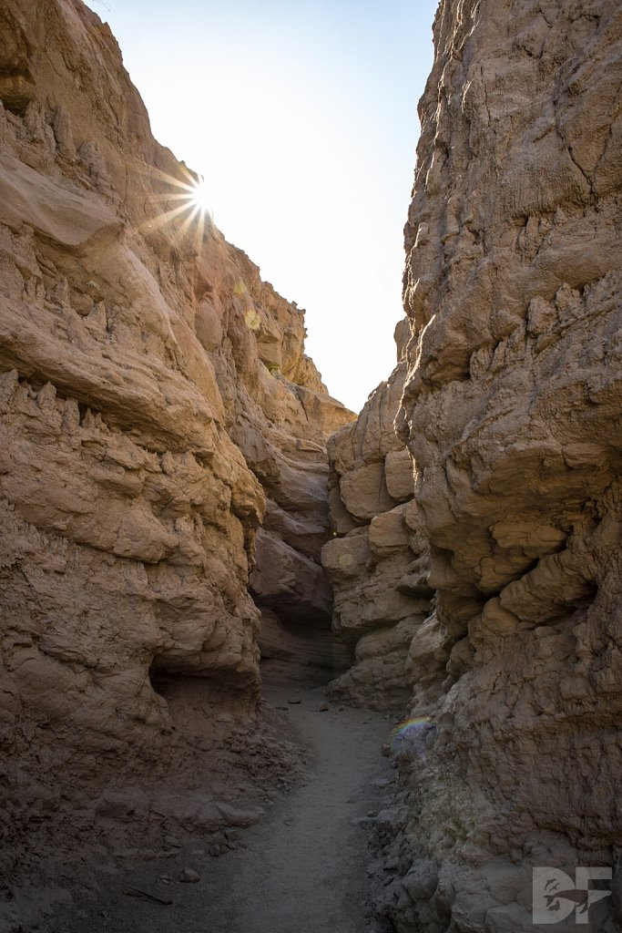 A Day in Anza Borrego VI