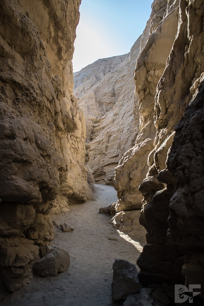 A Day in Anza Borrego VIII